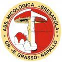 RINVIATA al giorno 1 NOVEMBRE 2020 - Mostra micologica di ogni specie fungina reperibile nella regione Liguria